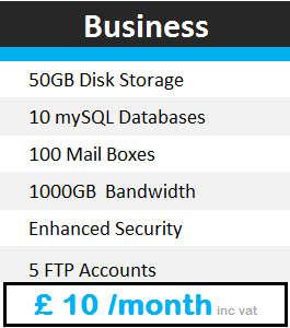 hosting-business